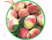 玉凤凰水蜜桃