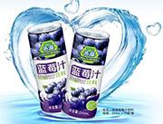 浩溢蓝莓汁245mlx15瓶