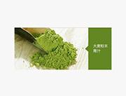 日本原装进口大麦若叶青汁粉末