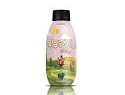 梅达人蔓越莓巴西莓蓝莓树莓饮料复合果汁饮料420ml