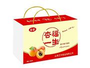 晋�l饮品杏福一生杏汁果汁饮料280ml礼盒装