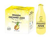 鹏达果缘菠萝汁饮料960mlx6瓶