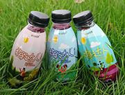 MaILIFE迈芙梅达人复合果汁饮料420ml