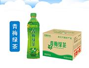 四季阳光 青梅绿茶饮料 500ml×15瓶