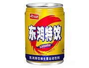 东鸿特饮维生素饮料功能饮料运动饮料250ml