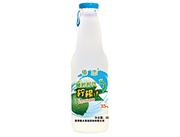 傣�偾���r代��檬汁300ml