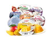 马来西亚进口果冻可尼斯多口味果冻410g