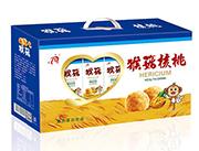 小百人猴菇核桃250MLX12盒