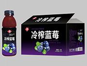 果浓冷榨果汁蓝莓味588mlX15瓶