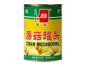 金华宾蘑菇罐头300g