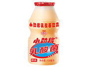 小��⒃�味乳酸菌�品100ml