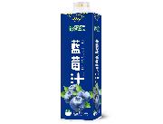 绿汇源蓝莓汁饮料1L