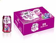 果星人蓝莓310ml×24罐