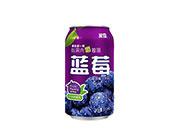 米奇蓝莓汁复合果汁饮料310ml×24罐
