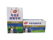 加智佳中老年核桃牛奶高钙低糖专属蛋白饮品