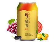 慢酵素发酵果蔬汁饮料310ml