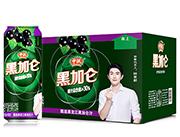 中沃黑加仑含气复合果汁饮料480ml×12罐