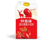 欢喜缘(红枣+枸杞)混合果蔬汁饮料500ml