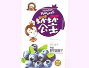进口美国野生蓝莓干58g