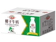 椰饮椰乐椰子牛奶