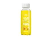 维他星益生菌发酵果汁428ml芒果汁