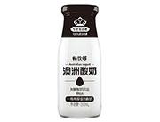 畅饮哆澳洲酸奶原味发酵酸奶饮品300ml
