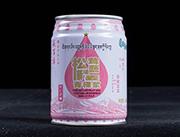 藏百草青稞浆儿童饮品易拉罐