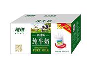 维维农大牧场纯牛奶250mlX12