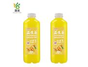 摇摇潮饮益生菌发酵复合型芒果果汁1.5L