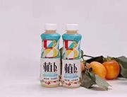 植卜�I�B乳酸菌�品瓶�b420ml