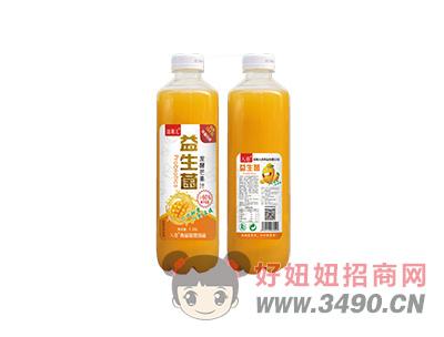 田果儿益生菌发酵芒果汁1.25L