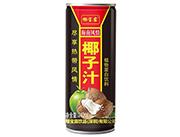 椰宝露椰子汁240ml