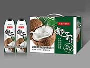 椰子汁礼盒装饮品