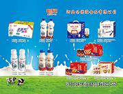 乳酸菌饮料饮品