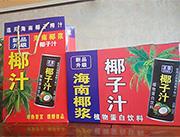 海南椰子汁植物蛋白饮料