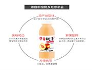 平谷桃汁饮料产品详图