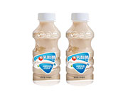 肠胃乳酸菌饮品自然纯香好选择340ml