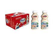慧能多乳酸菌饮品蓝莓味340mlX12
