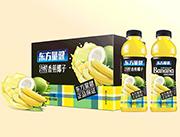 东方量健冷榨香蕉椰子果汁饮料550ml×15瓶