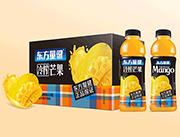 东方量健冷榨芒果果汁饮料550ml×15瓶