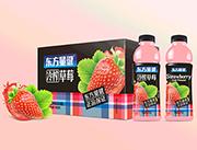 东方量健冷榨草莓果汁饮料550ml×15瓶