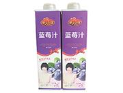 椰之喜缘蓝莓汁饮料1L