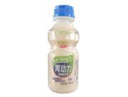 初元智养胃动力乳酸菌饮品原味338ml