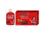 枣知音枣果汁饮料350mlX15瓶