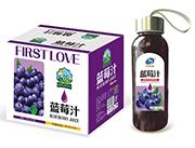 华宝圣园蓝莓汁饮料420ml×12瓶