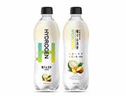 椰子菠萝水果味饮品480ml
