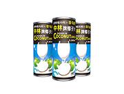 中林240ml椰子汁