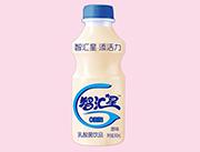 智汇星原味乳酸菌饮品340ml