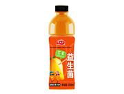 伊丽澳益生菌芒果发酵复合果汁饮料500ml