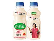 养生冠乳酸菌饮品1.25L草莓味